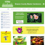 Brazos Master Gardeners image